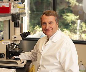 Dr. Stephen Quay